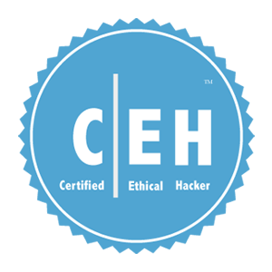 certified_ethical_hacker_Training_in_Noida