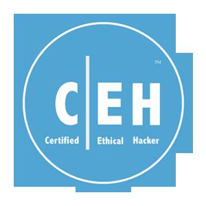 certified_ethical_hacker_Training_in_Noida
